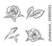 Beautiful Flower Contour Rose...