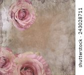 vintage background with roses... | Shutterstock . vector #243028711