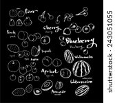 food menu illustrations   set... | Shutterstock .eps vector #243051055