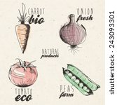 hand drawn vegetables... | Shutterstock .eps vector #243093301