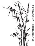 bamboo branches isolated on the ... | Shutterstock .eps vector #243095161
