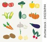 set of color simple vegetables...   Shutterstock .eps vector #243236944