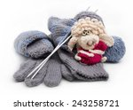knitted gloves and scarf in the ...   Shutterstock . vector #243258721