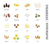 plant seed icon flat set with... | Shutterstock .eps vector #243304561