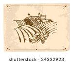 vineyard | Shutterstock .eps vector #24332923