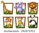 illustration of many animals in ... | Shutterstock .eps vector #243371911