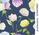 watercolor  hydrangea ...   Shutterstock .eps vector #243465889