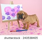 Cute Puppy Standing With A...