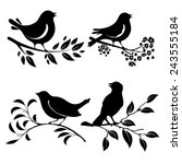 Set Of Birds Silhouettes On A...