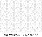seamless pattern of... | Shutterstock .eps vector #243556477