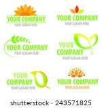eco logotype   Shutterstock .eps vector #243571825
