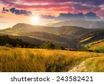 composite rural landscape. meadow path  on hillside with trees near the forest in high mountains in sunset light - stock photo