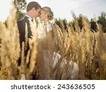 young beautiful wedding couple... | Shutterstock . vector #243636505