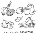hand drawn vegetables set.... | Shutterstock .eps vector #243647689