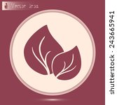 vector icon leaf    Shutterstock .eps vector #243665941