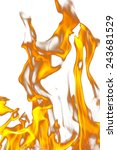 fire flames on a white... | Shutterstock . vector #243681529