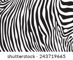 Zebra Stripes Pattern ...