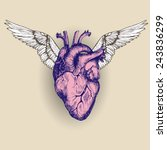 flying heart. vector... | Shutterstock .eps vector #243836299
