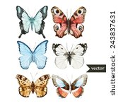 Stock vector watercolor butterfly set nature 243837631