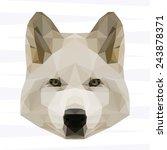 abstract polygonal geometric... | Shutterstock .eps vector #243878371