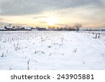 Winter\'s Tale. Winter Landscap...