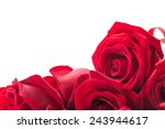 Stock photo red rose isolated on white background 243944617
