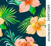 hibiscus. tropical plants... | Shutterstock .eps vector #243971389