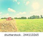 vintage rural landscape