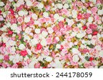 Stock photo pattern of fresh colorful roses 244178059