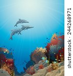 three dolphins  and coral reef... | Shutterstock .eps vector #244268971