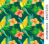 macaw seamless pattern. palm... | Shutterstock .eps vector #244272151