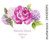 hydrangea  roses  flowers ... | Shutterstock . vector #244305091