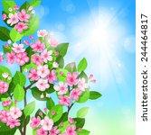 vector spring blossom...   Shutterstock .eps vector #244464817
