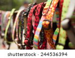 Stock photo dog collars for sale in pet store 244536394