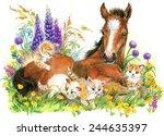 Cute Horse And Kitten. Pet...