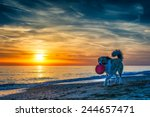 dog at the beach during sunset   Shutterstock . vector #244657471