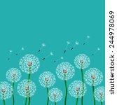 floral design. fluffy dandelion ... | Shutterstock .eps vector #244978069