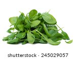 Green Spinach On A White...