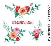 watercolor garden roses... | Shutterstock .eps vector #245109097