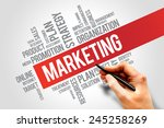 marketing strategy and core... | Shutterstock . vector #245258269