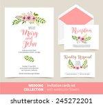 vector set of invitation cards... | Shutterstock .eps vector #245272201