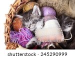 Stock photo sleeps kitten and heart pillow 245290999
