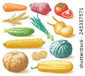 set of vegetables  fruits and... | Shutterstock .eps vector #245337571
