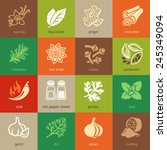 colorful web icon set   spices  ... | Shutterstock .eps vector #245349094