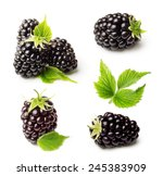 Blackberry Isolated On White...