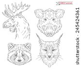 hand drawn animal set of forest ... | Shutterstock .eps vector #245424361
