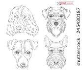 Hand Drawn Animal Set Of Dogs