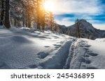 track skier mountaineer   Shutterstock . vector #245436895