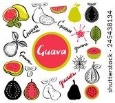 guava fruit  leafs  flower ...   Shutterstock . vector #245438134