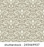 wallpaper in the style of... | Shutterstock .eps vector #245469937